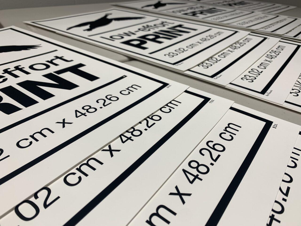 NP - 2020 - Goose - Low Effort Goose Print - v004 - 13x19 - table zoom
